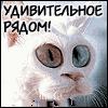 FormatFactory 1.48 - последнее сообщение от Klar